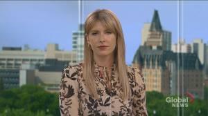 Saskatoon councillor on mail-in ballots, mandatory masks