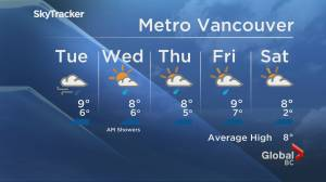 B.C. evening weather forecast: Nov. 23 (01:41)