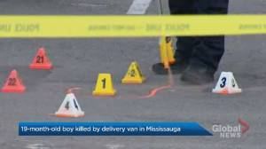 Young boy dead after being hit by delivery van outside Mississauga apartment, police say (01:29)