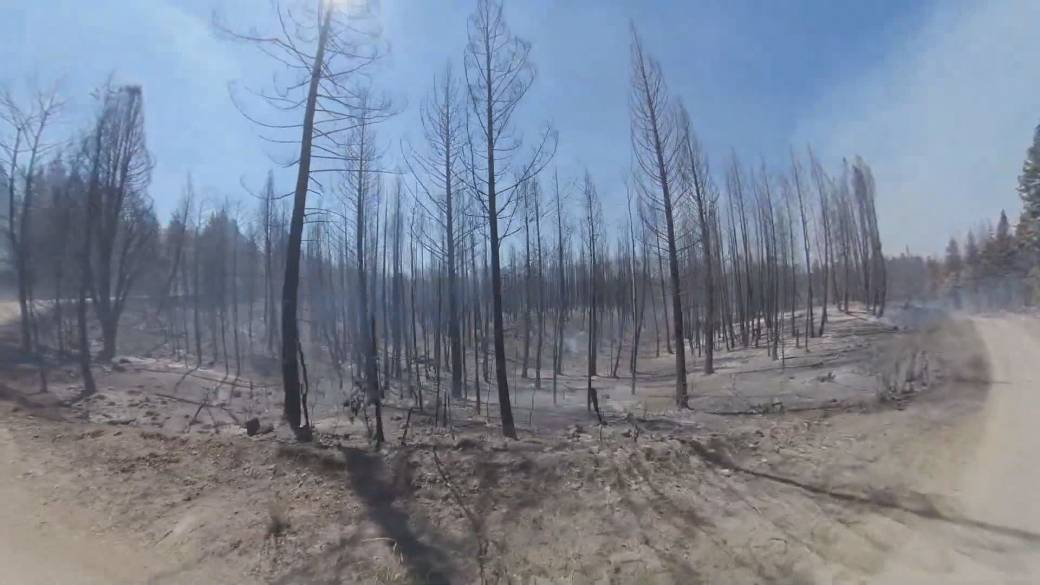 'Wildfire work  issues beardown  informing  to those who defy evacuation orders'