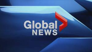 Global News at Noon Edmonton: March 19