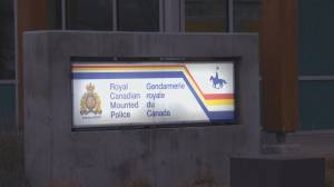 Federal government denies 'excessive force' in Kelowna, B.C., arrest where punches thrown