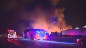Fire crews battle blaze at Durham Region orchard