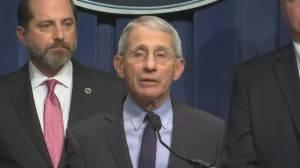 Coronavirus outbreak: U.S. health official says various organizations looking into vaccines