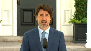 Coronavirus: Trudeau says 'complex' situation in the U.S. means no firm timetable on border reopening