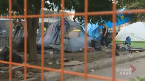 City of Toronto clearing homeless encampment at Alexandra park (02:51)