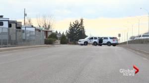 Alberta RCMP report reduced crime rates in 2020 (02:05)