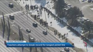 Teachers picket along 30 km route in Peel Region in Ontario-wide strike action