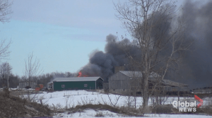 Crews battle barn fire in Cavan Monaghan Township near Peterborough Airport (01:16)
