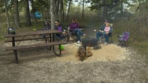 High demand for Saskatchewan campsites heading into the 2021 season (01:42)
