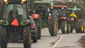 Fallout over Surrey RCMP's decision to shut down a planned Indian farmers protest in Cloverdale (01:44)