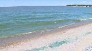 Young innovators team up to clean up Lake Winnipeg