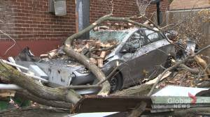 Montreal slammed by fall storm