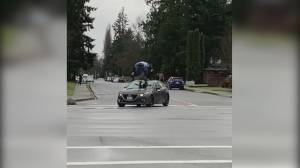 Man seen jumping on moving vehicle in Maple Ridge