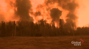 Global's Fort McMurray special to highlight resilience of town 5 years after wildfire (03:20)