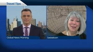 Travel Tips: COVID-19 vaccine news promising for travel industry (04:35)