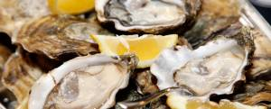 A preview of Kingston OysterFest 2019