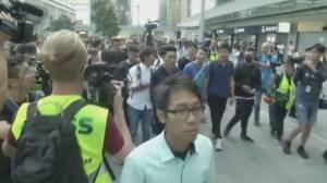 Hong Kong pro-democracy parties make landslide election wins (01:59)
