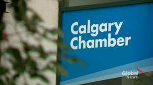 Calgary Chamber releases 'Pathways to Potential' platform ahead of municipal election (01:45)
