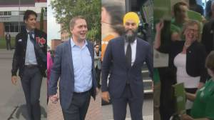 Undecided voters could hold key to federal election
