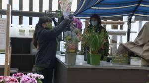 Ontario garden centres and nurseries fully open to the public