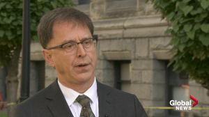 B.C. Health Minister says lead contamination a 'significant' issue with older homes