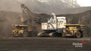 Mining companies knew about coal policy removal long before Albertans (03:41)
