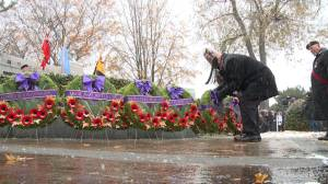 Hundreds gather in Oshawa for Remembrance Day ceremony