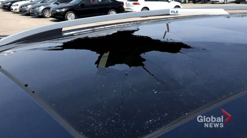 Shattered sunroof complaints on the rise in Canada   Watch News Videos Online