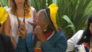 Brazilian indigenous chief calls on world leaders to save Amazon
