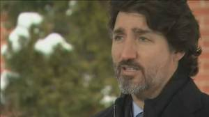 Trudeau 'frustrated' with speed of coronavirus vaccine rollout (03:01)