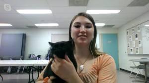 Adopt a Pet: Zilean the black cat (03:17)