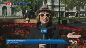 Global News Morning weather forecast: May 17, 2021 (01:39)