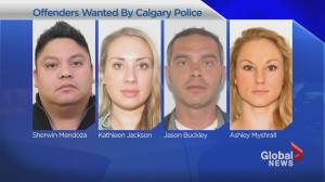 Suspects sought in vehicle cloning scam run out of northeast Calgary: police