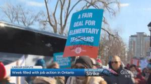 Halton Region teachers kick off strike week in Ontario