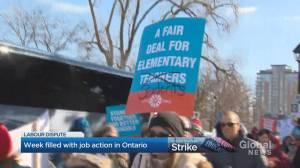 Halton Region teachers kick off strike week in Ontario