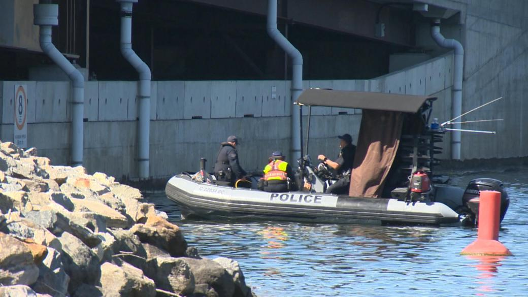 Click to play video: 'Search for missing diver underway on Okanagan Lake'