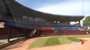 Lethbridge Bulls' GM optimistic ahead of 2021 WCBL season (01:51)