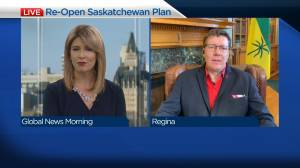 Scott Moe on re-opening the province (07:05)