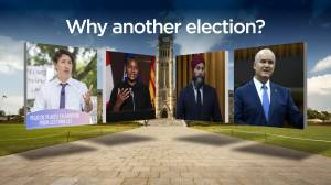 What is a snap election and could Canadians be heading back to the polls? (03:32)