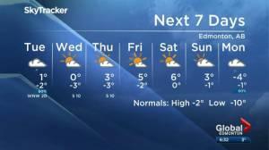 Edmonton Weather Forecast: Nov. 18