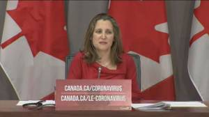 Coronavirus outbreak: Freeland says they've told U.S. that flow of medical equipment a 'two-way street'