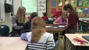 Edmonton Public Schools will not pilot new K-6 curriculum (01:48)