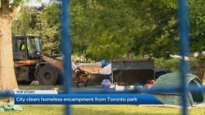 Crews bulldoze Trinity Bellwoods encampments day after police, protestors clash (02:05)
