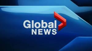 Global News at 6 Regina: Nov. 13 (11:13)
