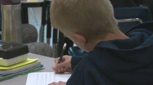 Alberta government launches new literacy program for students K-3 due to pandemic setbacks (02:03)