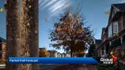 Play video: 2020 fall forecast: Ontario, Quebec can expect another mild September, October