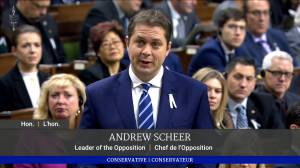 Scheer says 'unacceptable' that violence against women still an issue in Canada