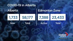 1,733 new COVID-19 cases Monday as Alberta identifies 'unconventional ICU spaces' (04:32)