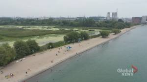 Concerns remain for vulnerable populations amid Ontario heat wave (02:10)